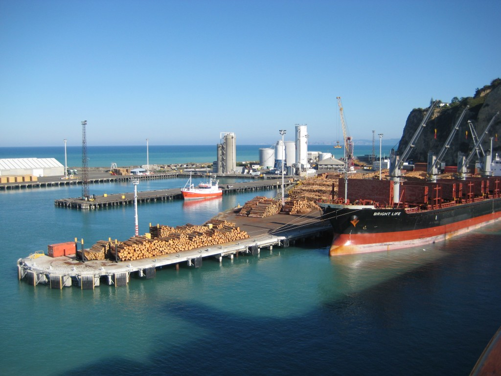 Napier Cruise Terminal
