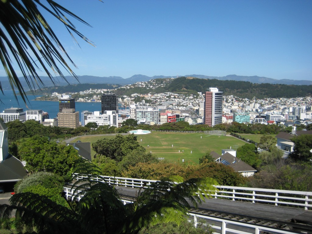 View of Wellington from the Botanical Garden