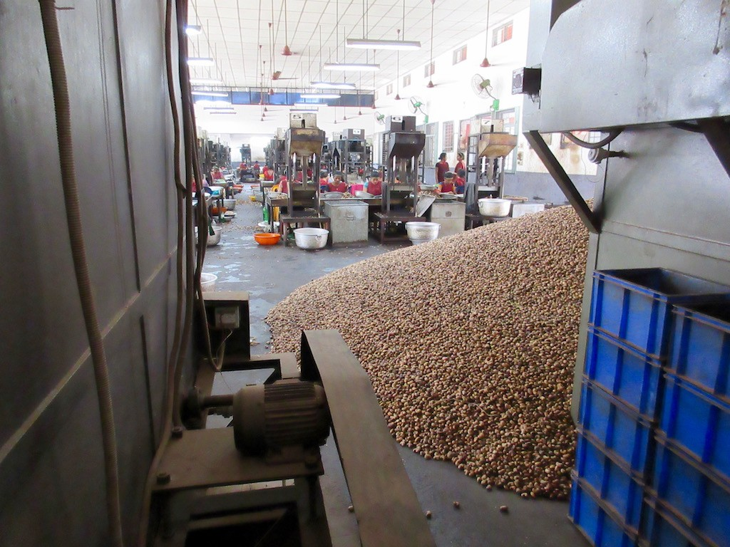 Mangalore Cashew Factory